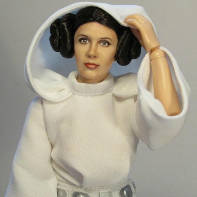 Princess Leia repaint by Pamela Reasor