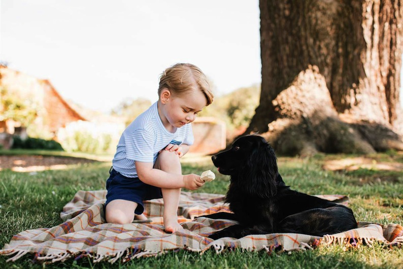 Prince George and his pup