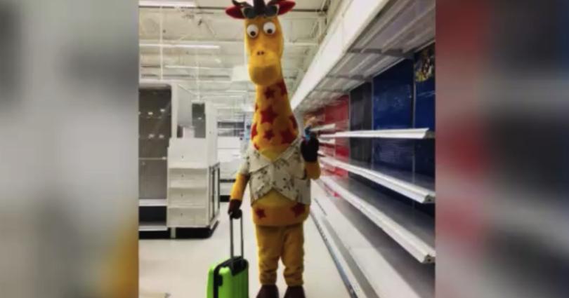 Geoffrey the Giraffe leaves Toys R Us